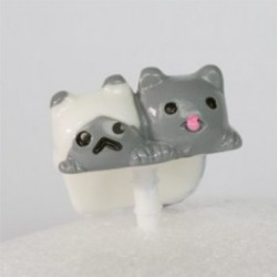 Sushimi kattekillinge tvillinger
