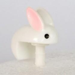 Sushimi hvid kanin